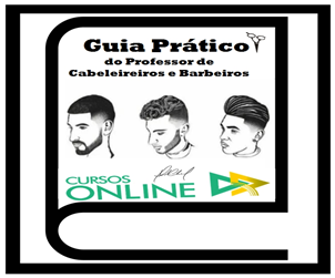 Guia Pratico 300x250